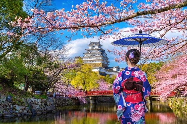 Nhật Bản vốn là đất  nước nổi tiếng trên thế giới